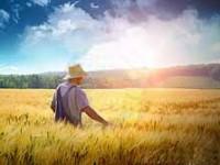 Pretul terenurilor agricole 2014